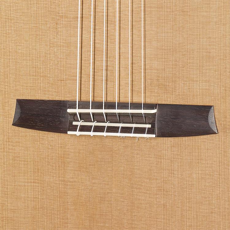 Fusion Pc Hanika Guitars